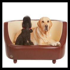 Chester & Wells Oxford l - Chester & Wells Stylish Dog Beds : Chester & Wells UK
