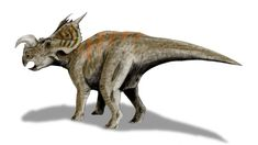 Einiosaurus BW - Einiosaurus - Wikipedia, la enciclopedia libre