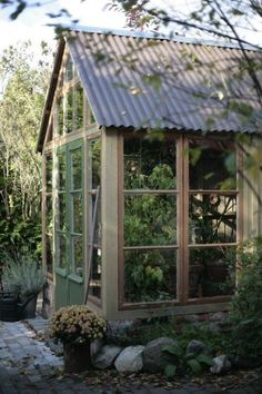 I love this shed/greenhouse. This is exactly what I want when we move - Tin Roof, and the rest floor to ceiling windows. Greenhouse Shed, Greenhouse Growing, Small Greenhouse, Greenhouse Gardening, Outdoor Greenhouse, Greenhouse Wedding, Wedding Backyard, Plant Watering System, Homemade Greenhouse
