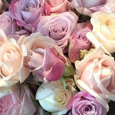 "Nikki Yazxhi on Instagram: ""Blooms @theboathousepb ! #theboathousepb #bellamummablooms #bloomsoftheday #rose"""