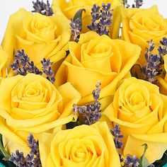 Citrus Smash http://www.serenataflowers.com/en/uk/flowers/next-day-delivery/product/106284/citrus-smash?refPageID=5045&refDivID=6 center product-set category-list 4x5 1+++4 4 product 106284 image 140x140 standing 5 4 standard 