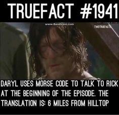 I didn't notice!!!!!!!! OMFG!!!! go Daryl