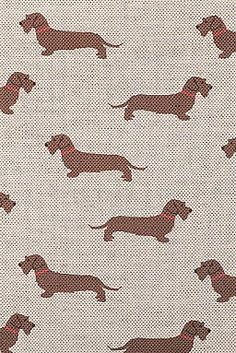 """Emily Bond """"Wire Haired Dachshund Fabric"""" also has Pink Dachsund, Blue Dachsun, Red Dachsund, Wire Haired Dachsund Chocolate Labrador (Chocolate Lab) Labrador (Lab), Long Dog, Wire Haired Jack Russell, & Hounds fabric. She also makes these all in wallpaper as well. Check this site out these fabrics & wallpaper are cute."""