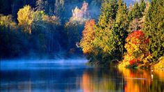 """MINDFULNES RELAXING MUSIC for Stress NATURE FOREST RIVER """" DRONE VIEWS """"... Meditation For Stress, Meditation Music, 4k Uhd, Landscape Pictures, Relaxing Music, Forest River, Color Splash, Black And White, Water"""