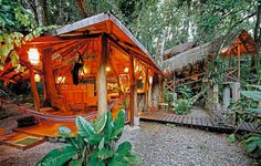 Tropical Tree House Lodge in Costa Rica-On the Southern Caribbean Coast of Costa Rica