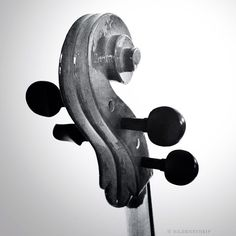 Like it? Detail of my violoncello...