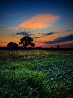 Visions   Flickr - Photo Sharing!