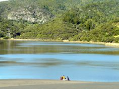 Lake Wainamu a.k.a Bethells Lake Te Henga/Bethells Beach  Swims that follow profuse sweating are the best kind of swims. The walk to Bethells Lake takes a decent hour. Profuse Sweating, Nz History, New Zealand Houses, Free Things To Do, British Isles, Auckland, Day Trip, Kiwi, Exploring