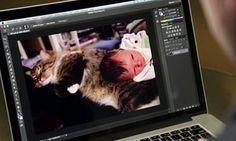 Alternative software to Photoshop