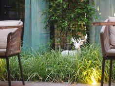 Hotel Balthazar Rennes - Blog A l'Ouest #hotelbretagne #bretagne #blogbreton #boutiquehotel French Trip, Spa, Blog Voyage, Mood, City, Plants, Rennes, Brittany, Design Hotel