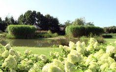 Parkachtige tuin met zwembad