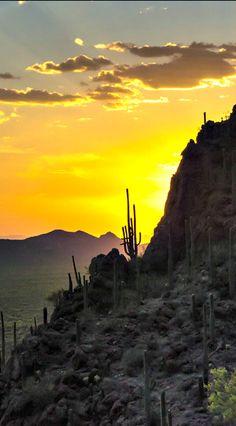 Scottsdale, Arizona at sunset  I like***************************** larrymillerscottsdale.com