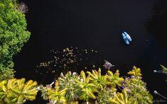 Trash the Dress de una boda en Puerto Escondido - drone foto (Manialtepec Paddleboard Photo SUP, DJI Mavic Pro. Autor: Alex Krotkov Fotografo Puerto Escondido)