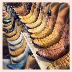 Boots Alligator Cowboy Traders Village Grand Prairie Texas Flea Market IMG_7064 by Dallas Photographer David Kozlowski, via Flickr
