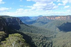 It may not be as well-known as its namesake in the US, but the Grand Canyon in the Blue Mountains of Australia is still definitely worth hiking. Forest Mountain, Mountain Village, Blue Mountain, Mountain View, Grand Canyon Lodging, Grand Canyon Hiking, Blue Forest, Small Waterfall, Beautiful Waterfalls