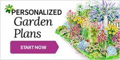 Property Line Garden