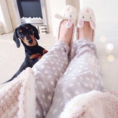 Such a cute dog Pajamas All Day, Puppies And Kitties, Warm Blankets, Just Girly Things, Getting Cozy, Stay Classy, Warm And Cozy, Cosy, Lounge Wear