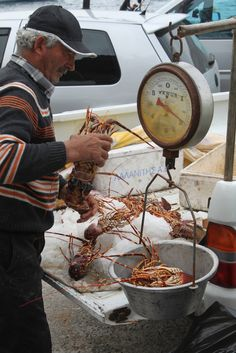 Ammoudi port of Santorini... Fisherman selling lobsters