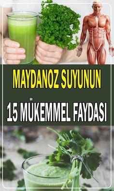 Medicinal Plants, Cucumber, Feel Good, Yogurt, Herbalism, Medicine, Health Fitness, Food And Drink, Herbs