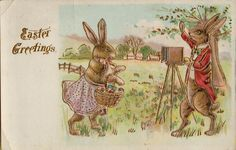 Vintage Easter Bunny taking Photo Greetings Postcard Card Victorian Embossed #Easter