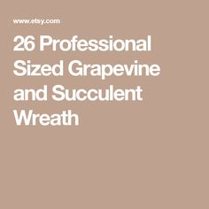 26 Professional Sized Grapevine and Succulent Wreath