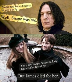 James loved Lily too. They're the cutest couple ever. :) (besides maybe Ron and Hermione)