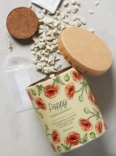 A gardening kit that'll allow you to grow poppies right on your windowsill this spring. Poppy Flower Garden, Poppy Flowers, Organic Hydroponics, Indoor Grow Kits, Growing Poppies, Family Tree Poster, Plant Diseases, Organic Seeds, Good Enough To Eat