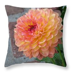 A pink and yellow dahlia in the garden of the old whaling station near Fisherman's Wharf in Monterey. Photograph by James B. Toy, pillow by Pixels.