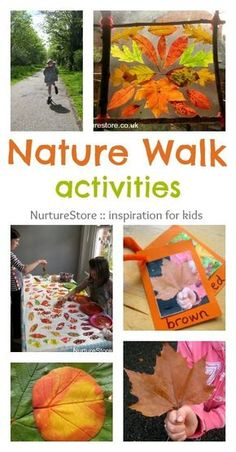 Great ideas for nature walk activities :: outdoor play activities :: forest school :: learning about the seasons