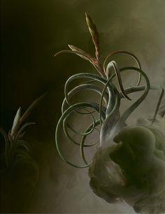 Flora by Fulvio Bonavia #stilllife #fineart #flowers #smoke #colour
