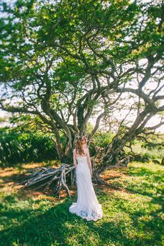 Beautiful Sasha.  Puakea Ranch Tree. Destination Wedding.  Hawaii
