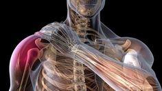 La spalla congelata: un approccio multidisciplinare
