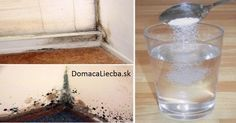 Getting rid of mold can be quite a tricky business, especially if you are into all-natural cleaning. Conventional mold removers are packed with strong chemicals and toxins. Bleach and borax do miracles, but they also release health-harming vapors. Cleaning Mold, Cleaning Hacks, Mold Exposure, Limpieza Natural, Toxic Mold, Get Rid Of Mold, Homemade Detox, Natural Cleaners, Cleaners Homemade