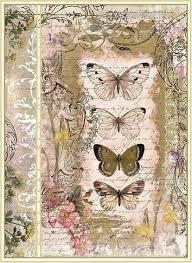 """Résultat de recherche d'images pour """"vintage butterflies background"""""""