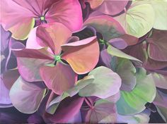 Symposium of pink and green Hydrangeas