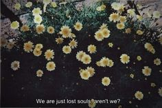 We are just lost souls, aren't we?