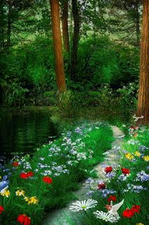 image nature - Page 2 Beautiful Gif, Beautiful Gardens, Beautiful Places, Beautiful Pictures, Gif Pictures, Nature Pictures, Fantasy Landscape, Landscape Art, Gif Bonito