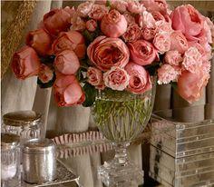 David Austin Roses - my wedding flowers :)