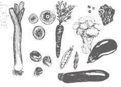 Vegetables | Caroline Young Illustration