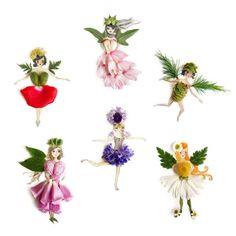 Flower Fairies – Flora Forager