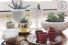 Cute ways to reuse cute containers. Prev: Have fun gardening indoors with kids! Use tea cups and other cute containers to plant mini succulents. Herb Garden Planter, Planting Succulents, Catus Plants, Potted Plants, Indoor Ceramic Planters, Indoor Grow Lights, Small Herb Gardens, Vegetable Garden Planner, Growing Herbs