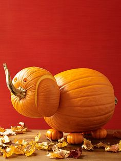 Friendly Elephant Pumpkin Carving Idea