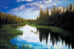Saskatchewan, two kayakers on the Churchill river, wide shot on sunny day with green trees / by: Tourism Saskatchewan/Greg Huszar Tourism Saskatchewan, Saskatchewan Canada, The Places Youll Go, Places To Go, Spiegel Online, Le Far West, Camping, Canada Travel, Wilderness