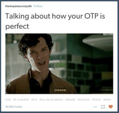 Disagreeing with anyone who says your OTP isn't perfect: | 23 Tumblr Posts About OTPs That Are Accurate AF