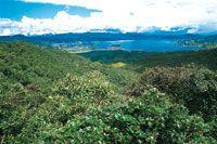 La laguna de La Cocha, hace parte del gran sistema de humedales del norte de Los Andes y está rodeada por bosques en buen estado de conservación, a pesar de que en algunos sectores presenta fuerte alteración por la extracción de carbón vegetal.