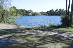 Bird of Paradise Park is a passive park providing a place to relax and enjoy the beauty of nature.