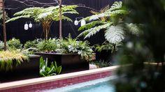 Valverde Hotel #exteriordesign #decoration #bastir #garden #pool #decorating #ideas #decor #green #exterior Boutique, Plants, Travel, Lisbon, Viajes, Destinations, Plant, Traveling, Trips
