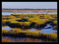 Lowcountry----Beaufort South Carolina