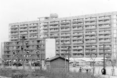 Image result for 前川 國男 晴海 アパート Multi Story Building, Architecture
