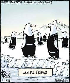 -Casual Friday....oh silly penguins